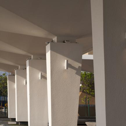The canopy.jpg