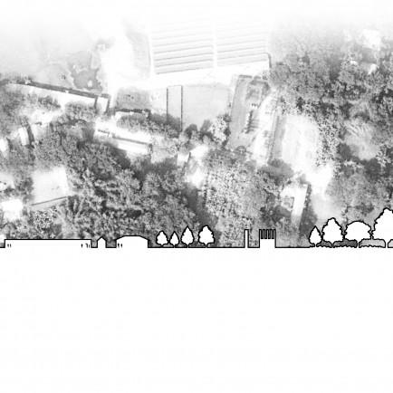 Rural scape gray.jpg